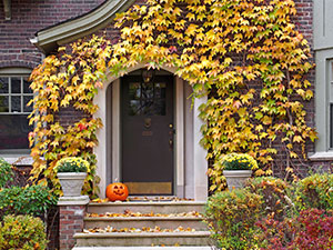 Check These Fall Maintenance Items Off Your To-Do List